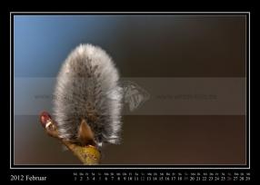 02-2012-web