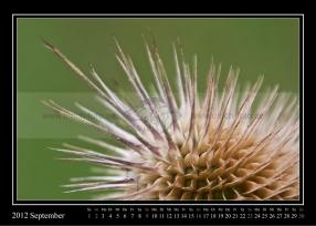 09-2012-web